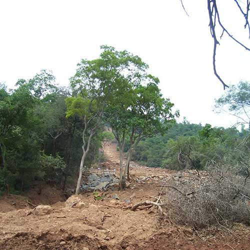 Debris flow triggered due to heavy rainfall on 09 November 2009 in Kallar area.